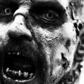 2010-12-14_zombie_870
