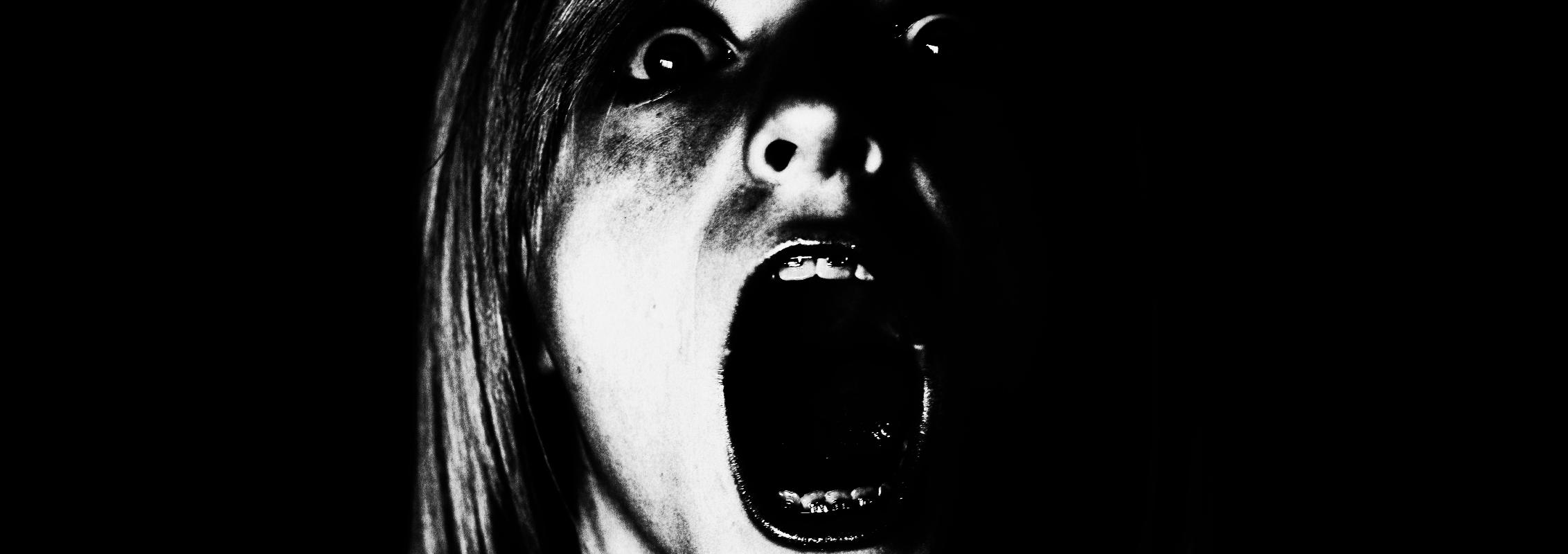 http://denkfabrikblog.de/wp-content/uploads/2013/02/2013-02-07_schrei_angst.png