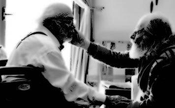 Ein Kurzfilm von Danny DeVito: Curmudgeons