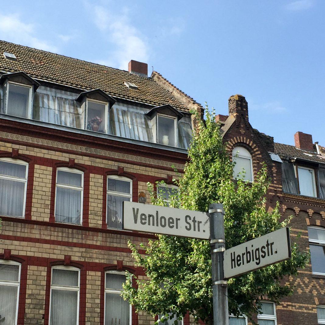 Foto: Ehrenfelder Rotkehlchen