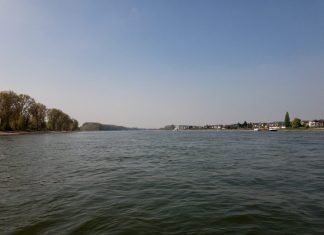 Foto: Mit der Fähre über den Rhein