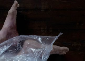 Kurzfilm: The Body