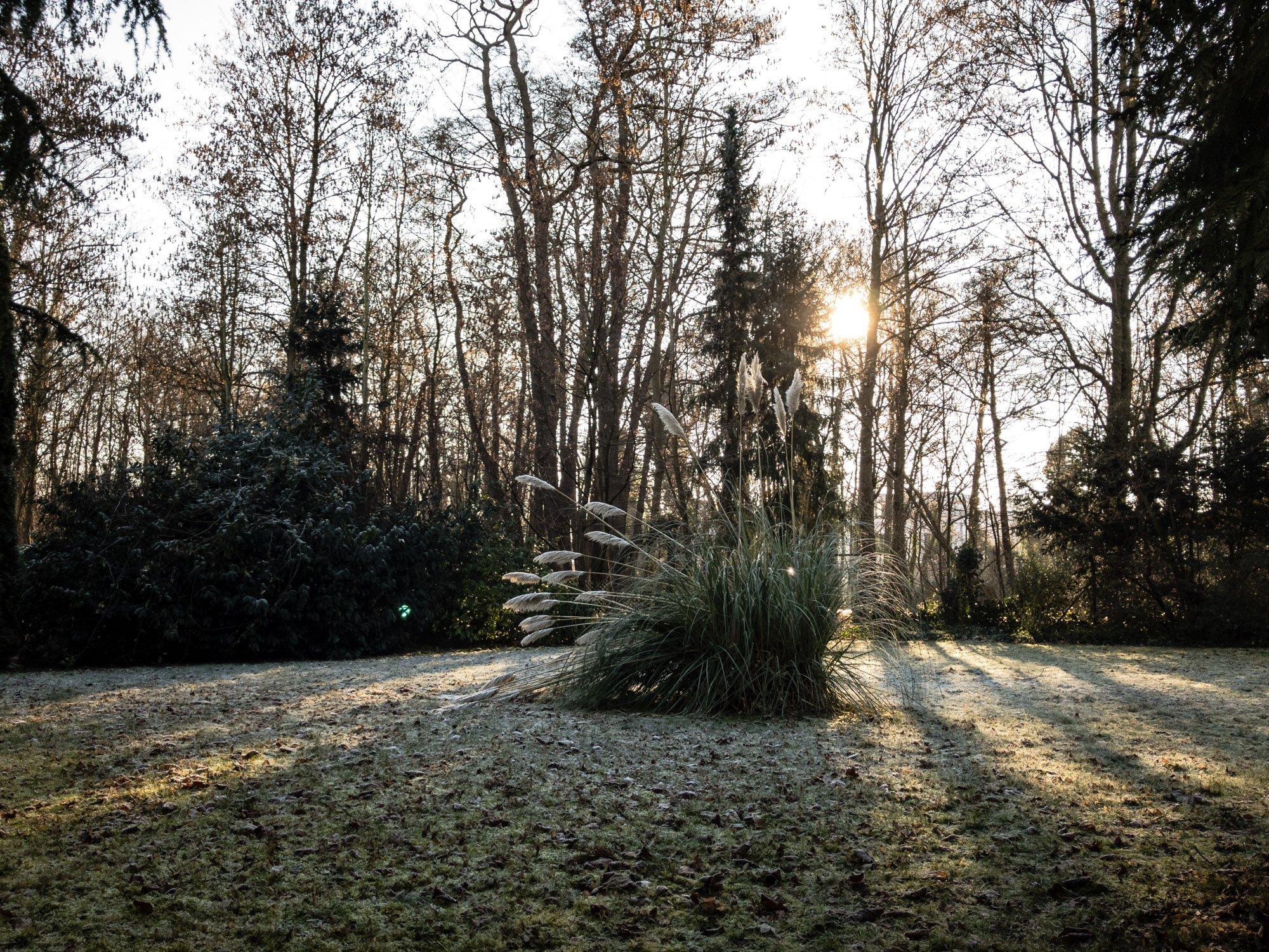Foto garten im winter denkfabrikblog for Garten pool im winter